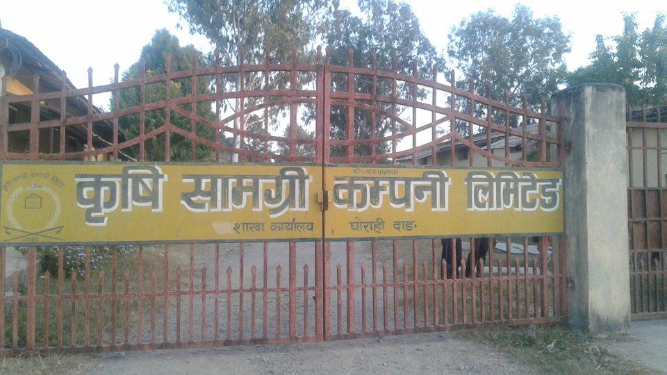 तुलसीपुर र लमहीमा मलको अभाव 2